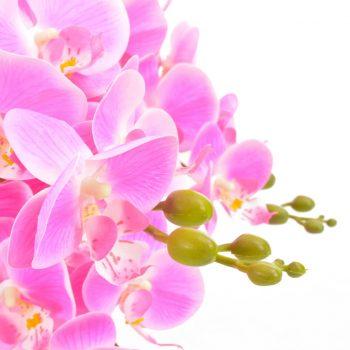 Umetna rastlina orhideja z loncem roza 60 cm