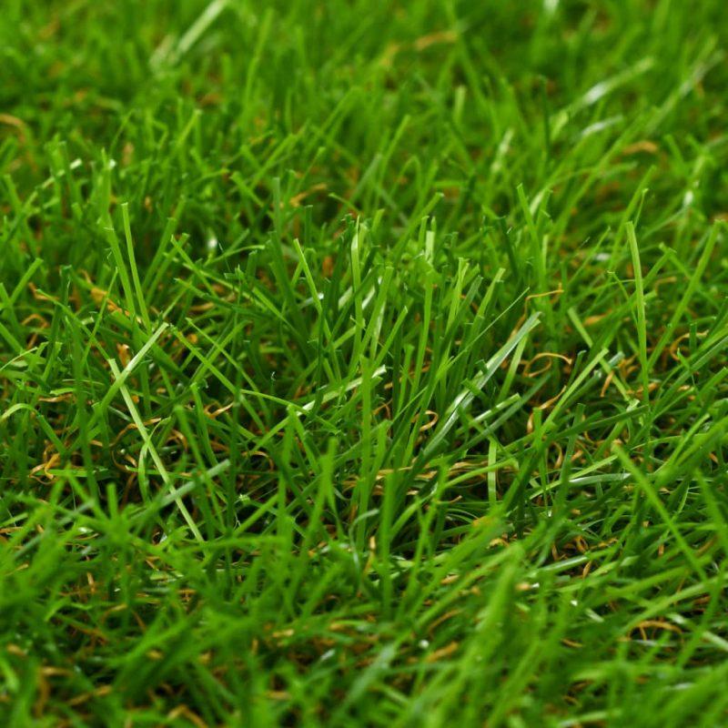 5x8 m/40 mm zelena
